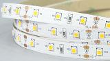 UL TUV RoHS Ce enumerado día blanco 2835 60LED 12W/M 10mm cinta de luz LED para iluminación