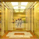 Le passager d'ascenseur de marque Fujizy