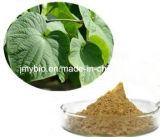 Естественный порошок выдержки Kavalactones 30%~70% Kava Kave