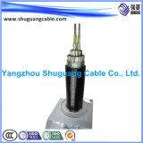 Geïsoleerded ElektroKabel XLPE Met hoog voltage