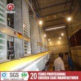 Gaiola animal das galinhas poedeiras das gaiolas da galinha para a venda em Brasil