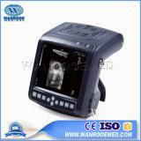 Uskx5200V Full-Digital Ecógrafo Veterinario Modo B