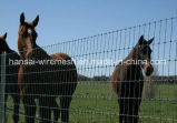4FT 5FT 6FT 8FT Height Pasture Fence Goat Farming Grassland Cheap Field Fence