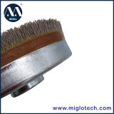 Balai abrasif de balai de disque de qualité pour supprimer les bavures dB-100021