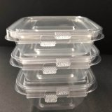 Hinged Lidsの正方形のClear Pet Plastic Salad Container