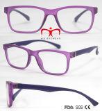 De modieuze Hete Verkopende Glazen van de Lezing Eyewear met FDA van Ce (WRP702886)