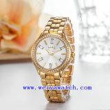 여자 손목 시계 (WY-019B)를 주문을 받아서 만드는 시계