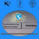Testosterona esteróide Cypionate 58-20-8 da hormona da CYP do teste do crescimento do músculo