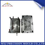 Muffa di plastica personalizzata dello stampaggio ad iniezione di precisione del ricambio auto della parte dell'automobile