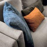 O sofá do canto da tela da sala de visitas do estilo do lazer ajustou-se (F1113)