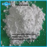 Tetracaine anestésico local del polvo