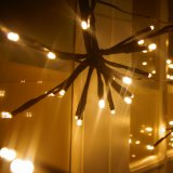 Indicatore luminoso decorativo dell'interno/esterno per il giardino, cerimonia nuziale, partito di natale, patio di attaccatura chiara dell'albero della stringa del globo della stringa