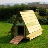 Chambre de poulet (QZC1007)