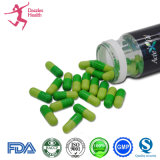 Grosse pillule de fines herbes normale de santé d'extrait d'Acte pour amincir la perte de poids de capsule