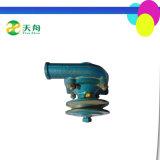 Il motore diesel di Changfa di alta qualità parte il Assy della pompa ad acqua Zh1125 per il trattore