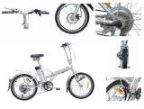 E-Bici pieghevole approvata del CE (spazio della città)