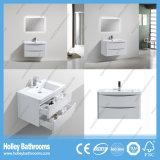 Moderne europäische Badezimmer-Möbel mit LED-Lampen-Spiegel (BF312D)