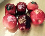 Tinta comestible de la impresión superficial de Apple