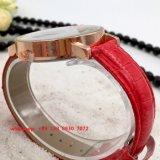 La montre des femmes à la mode populaires de quartz avec le cuir Fs529