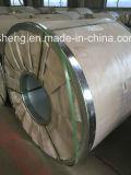 Bobina de aço Pre-Painted da cor (PPGI/PPGL)