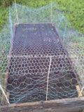 정원 담 또는 가금은 6각형 철사 그물세공을 감금한다