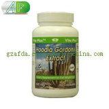 Hoodia Gordonii Kaktus-Gewicht-Verlust-Diät-Pille