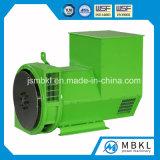 디젤 엔진 발전기 세트에서 이용되는 100% 구리 200kw/250kVA 무브러시 발전기