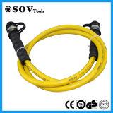 Boyau hydraulique à haute pression de vente chaud de l'Europe (SV21P700)