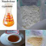 Выдержка завода креатина 57-00-1 порошка питания спорта белое глюкокортикоидное анти- воспалительное естественная
