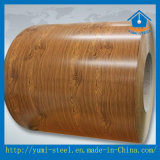Bobina d'acciaio galvanizzata con acciaio rivestito per i prodotti della struttura d'acciaio