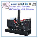 20kw Weerbestendig van de Generator van 25kVA Elektrische Open Stille met Motor Yangdong