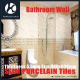 De Tegels van de Muur van de badkamers