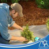 De PP não tecido Termoligada Barreira de plantas daninhas tecido paisagem de mat