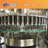 8000bphマンゴジュースの満ちるシステム