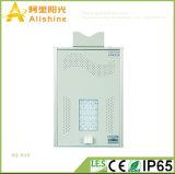Новый Ce IP65 все Manufacurer Suppling RoHS золота 15W в одном солнечном светильнике сада уличных светов