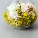 Подарок цветка промотирования для украшения рождества