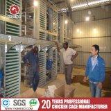 Tipo gabbia galvanizzata calda dello Zambia H di strato del pollo della rete metallica da vendere