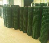 Покрынная PVC сваренная ячеистая сеть