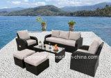 新しいデザインは藤のソファーの庭の屋外のテラスの家具を置く