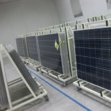Prezzo fotovoltaico del comitato 260W di sconto solare del Yangtze mono