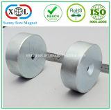 Verschiedener Überzug-Zylinder-Magnet verwendet in der Schraube