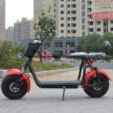 800W F/Rの中断、2つのシートが付いている電気蹴りのスクーター