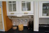 純木のドアのパネルが付いているモジュラー食器棚
