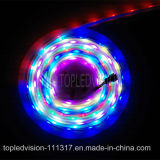 Traumbeleuchtung-Streifen 60LEDs/M der farben-SMD 5050 LED