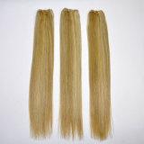 Trama 100% do cabelo humano de Remy da cor da mistura do preço de fábrica