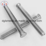 Acier inoxydable Stee304 Screw / Vis à tête hexagonale Ss 304 Truss Head Bolt
