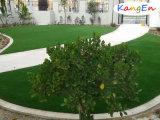 Het beste PPE van de Premie Materiële Kunstmatige het Modelleren van de Tuin Gras
