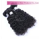 Les cheveux bouclés malaisien bruts Whoelsale Tissage de cheveux humains