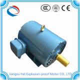 Moteur électrique en acier approuvé de Sheel de la CE