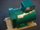 Stc 시리즈 3kw에서 50kw에 삼상 a.c. 발전기